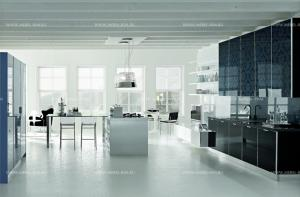 stosa-cucine-2-walls-kitchen-brillant-007-black-glass-with-flower-decor-italy_01.jpg
